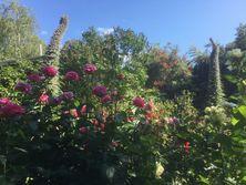Butler Garden
