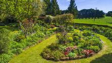 Country Farm Perennials  2021