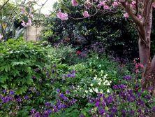 Darley Grange