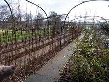 Fraser+39s Garden   2021