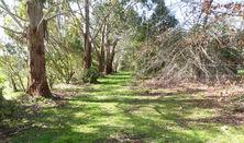 Wrens Wood   2021
