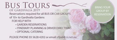 Bus Tours