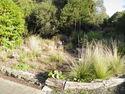 27 John and Dee's Garden