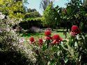 Schmidt's Garden