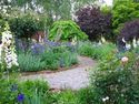 Country Farm Perennials
