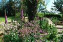14 Kurinda Rose Garden